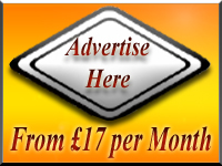 Advertise Auction